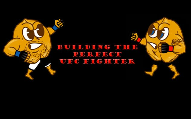 Building the perfect UFC Fighter