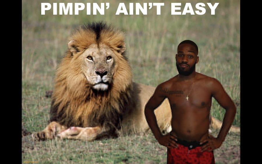 MMA Parody Images