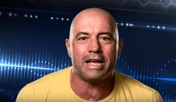 UFC 205 Joe Rogan Riffs
