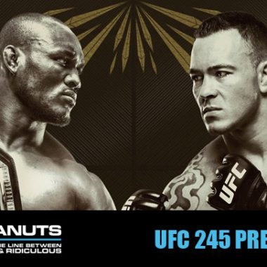 ufc 245 predictions